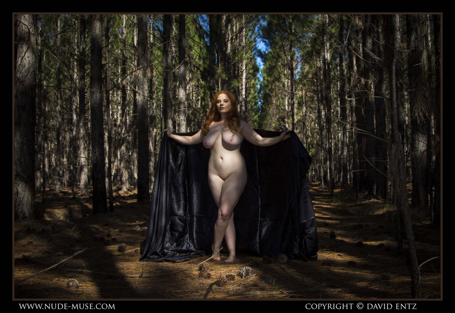 Avalon Dark Forest for Nude Muse