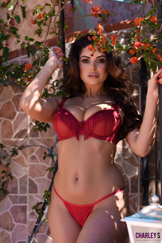 Charley Springer Red Thong Erotica