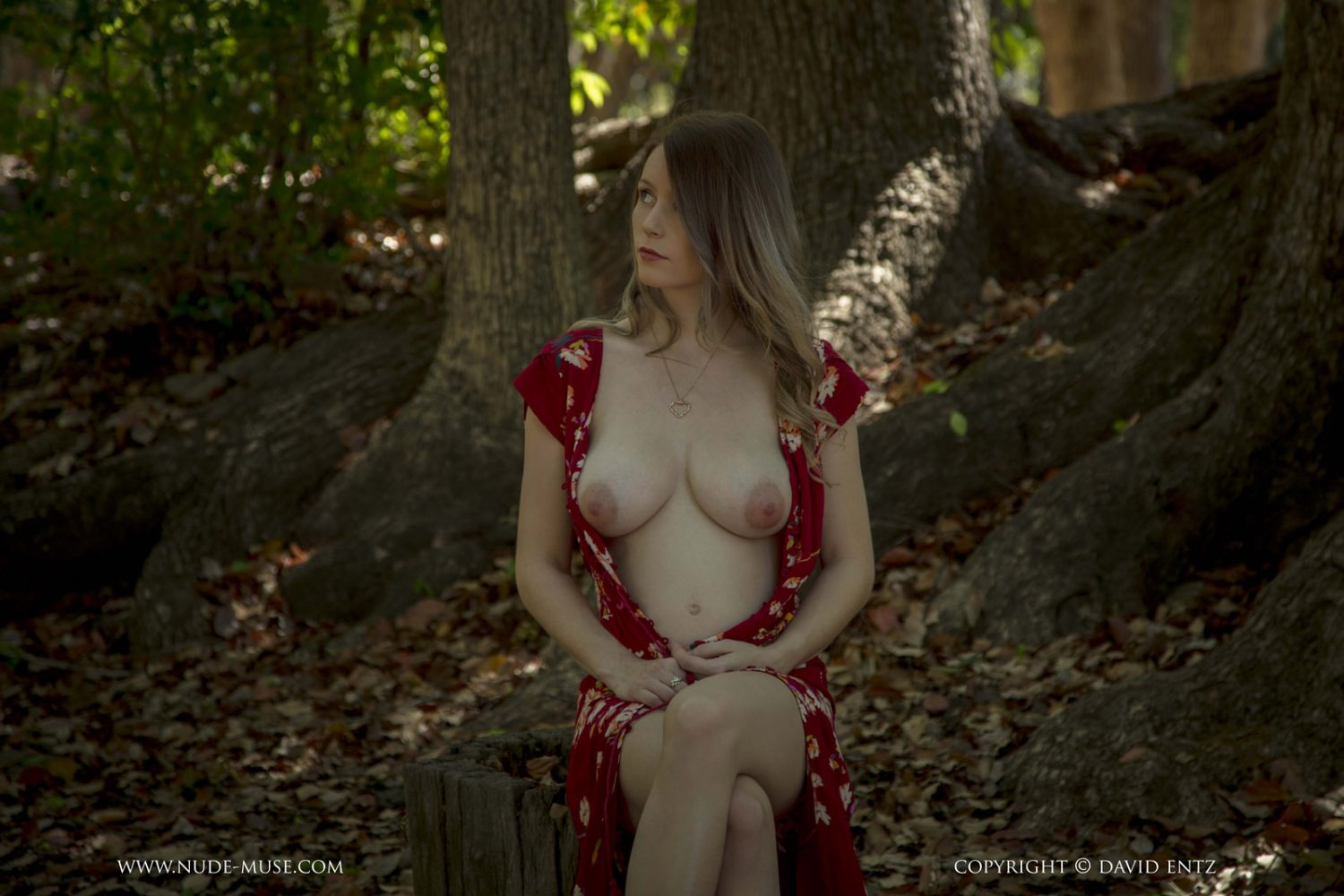 Misty Day Pregnant Nude Muse